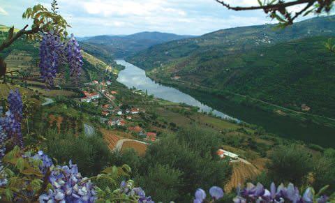 77 Douro.jpg