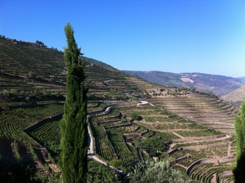 A UNESCO World Heritage Site, the Douro River Valley is the epicenter of port wine production. Photo © 2012 Peter Saunders