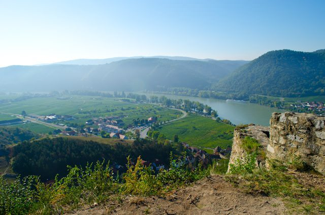 The Wachau Valley is noted for its wine production - and its apricots. Photo © 2013 Aaron Saunders