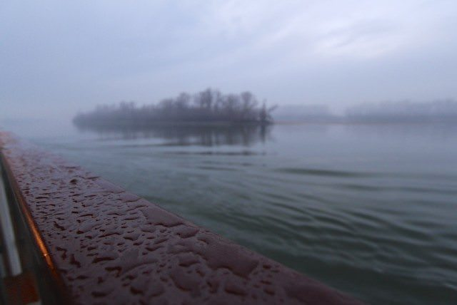 Misty and magical island on the Danube.