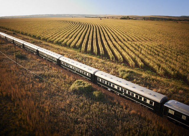 "AmaWaterays new ""Rivers & Rails of Africa"" itinerary will include a journey aboard the classic Rovos Rail luxury train. Photo courtesy of Rovos."
