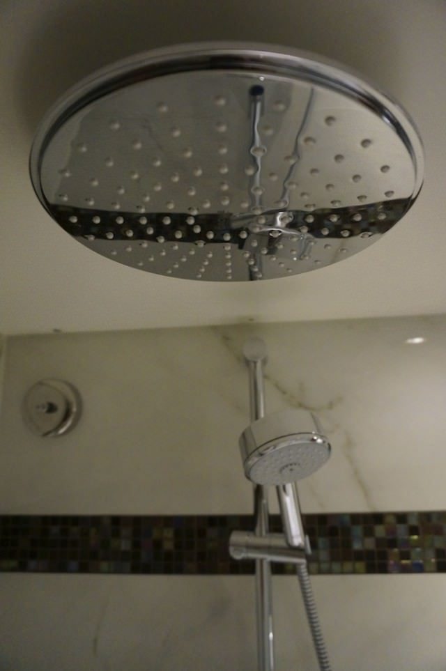 AmaWaterways Rainforest Shower