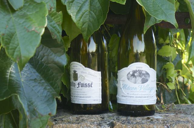 Monday, we cycled through vineyards where renowned French wines are made. @ 2013 Ralph Grizzle
