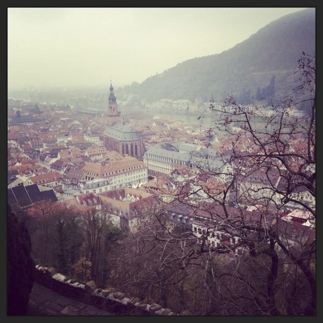 Heidelberg, as seen from Heidelberg Castle. © 2013 Ralph Grizzle