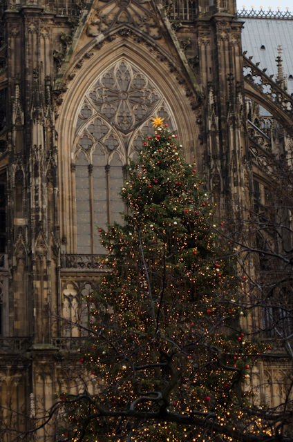 Cologne Cathedral boasts a busy Christmas Market anchored by a festive, oversized tree. Photo © 2013 Aaron Saunders