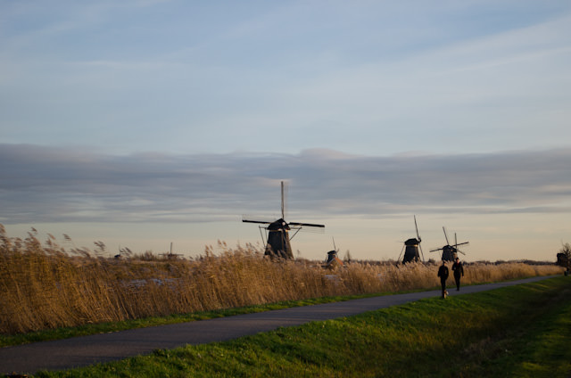 The idyllic Dutch countryside at its finest. Photo © 2013 Aaron Saunders