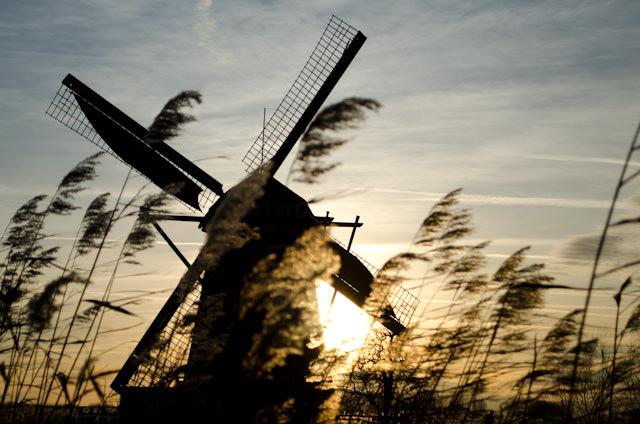 Touring the windmills of Kinderdijk, Netherlands as our journey along the Rhine aboard Viking Baldur wraps up. Photo © 2013 Aaron Saunders