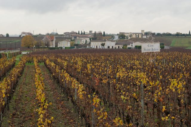 As you might expect, wine plays an enormous role in AmaWaterways' forthcoming Bordeaux itineraries. Photo © 2014 Aaron Saunders