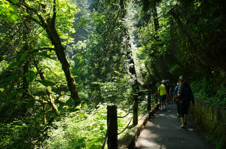 Hiking up to the falls bridge...Photo © 2015 Aaron Saunders