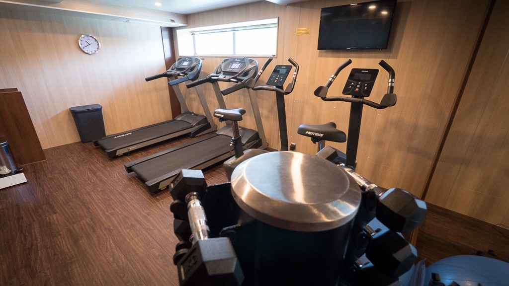 The fitness center on deck one with cardio machines and free weights. © 2015 Ralph Grizzle