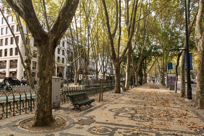 Lisbon in the Fall. Photo © 2015 Aaron Saunders