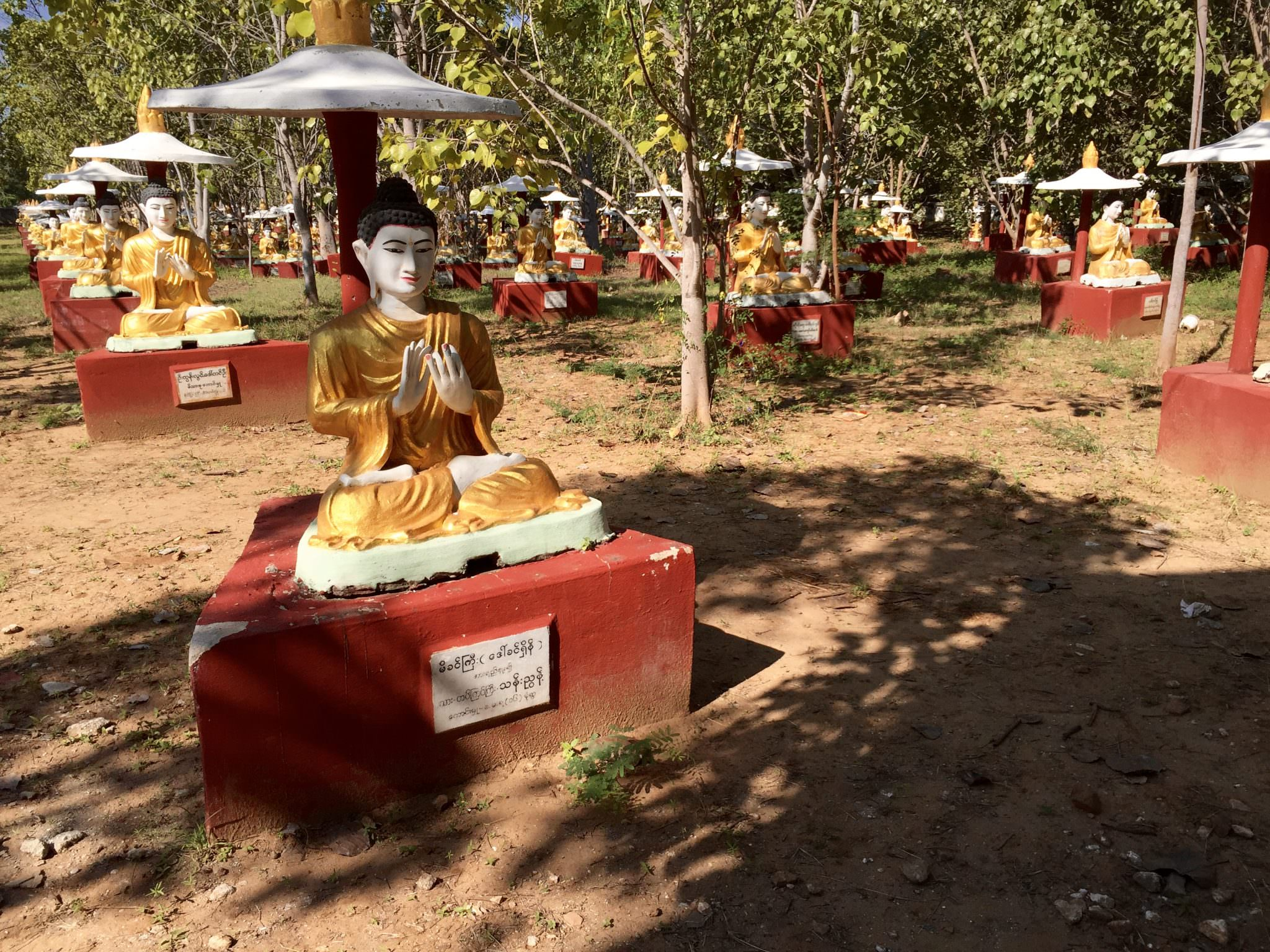 More than 10,000 Buddhas stand guard over the sacred banyan trees. © 2015 Gail Jessen