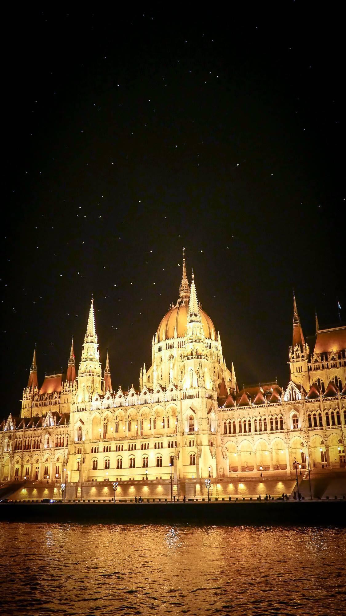 Budapest Parliament birds
